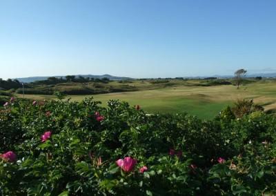 Golfing trip to Ireland with Ireland Golf